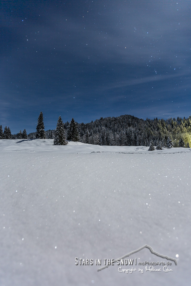 Stars in the snow