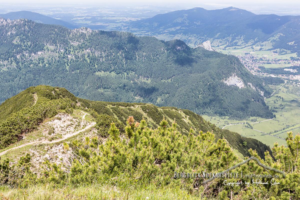 Bergblick Notkarspitze