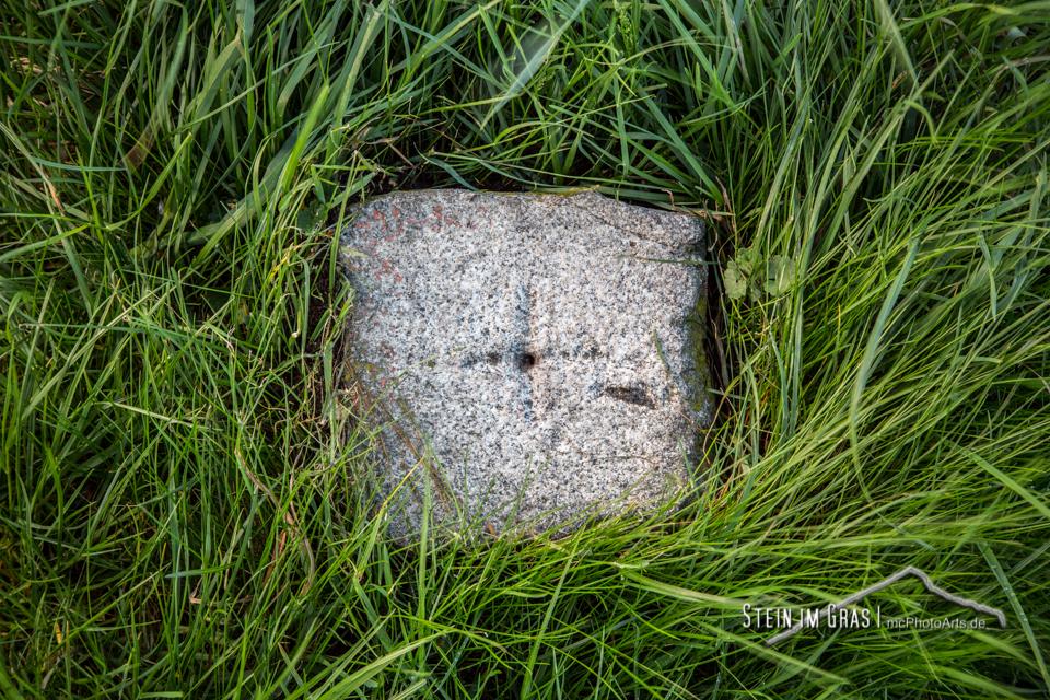 Stein im Gras